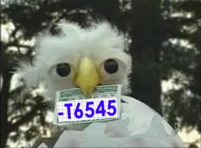 EagleMan-TraceFlag